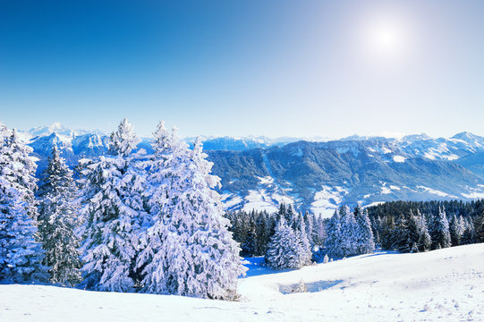 Snow-covered trees on the mountains, Mont Blanc ridge in the background. Beautiful winter landscape