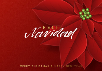 Merry Christmas, background decorated with beautiful red buds poinsettia flowers. Spanish text Feliz Navidad