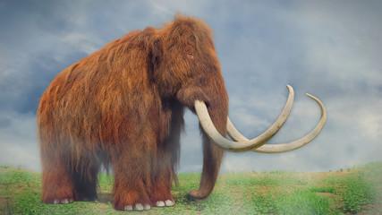 woolly mammoth, prehistoric mammal in foggy landscape (3d illustration)
