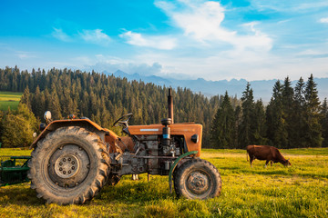 Rural farming view in Tatra mountains