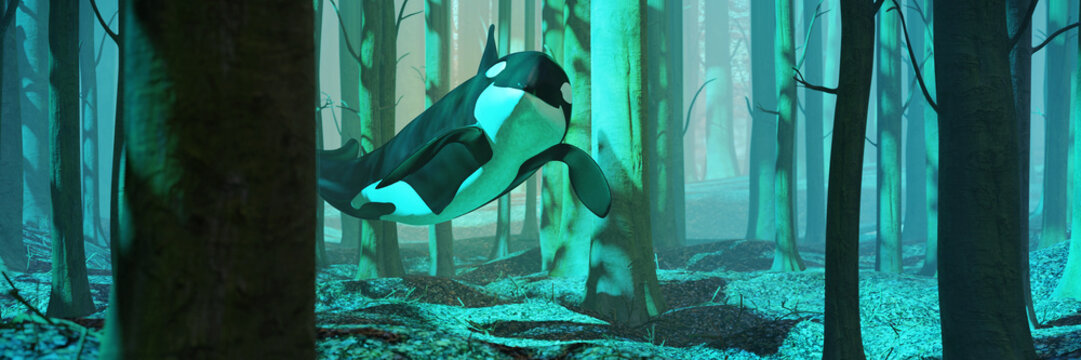 killer whale swimming in forest, orca flying in foggy landscape
