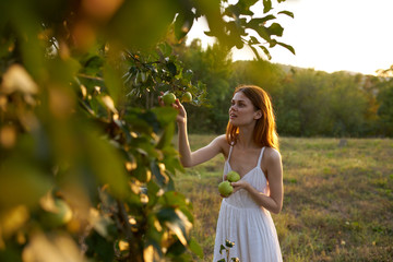young woman in white dress tears off apples garden
