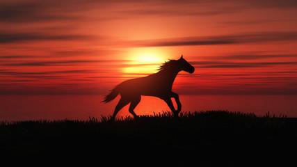 3D horse running in a sunset landscape