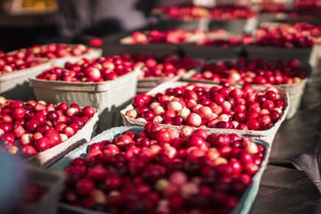 fresh cranberries at a farmers market