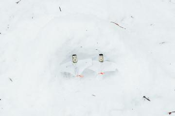 ice dolls in the snow
