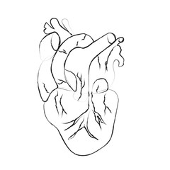 Black human hearts in outline style on white background