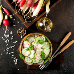 Fresh vegetable garden radish and cucumber salad