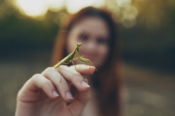 Mantis on woman's hand