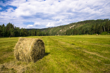 landscape with haystack