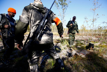 Belarusian hunters drag killed roe deer as they take part in a hunting on wild ungulates near the village of Myshanka