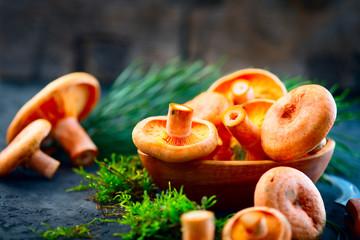 Raw wild Saffron milk cep mushrooms on dark old rustic background. Lactarius deliciosus. Rovellons, Niscalos. Organic fresh mushrooms closeup on a table