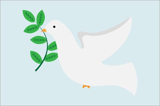 Paloma blanca de la paz.