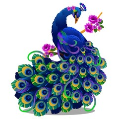 Beautiful bird peacock sitting on a perch with flowers isolated on white background. Vector cartoon close-up illustration.