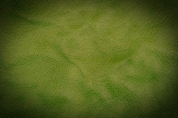 Green leather texture or leather background for design with copy space for text or image.