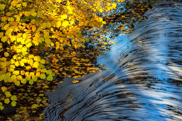 River with foam floating on the water at autumn colored branches