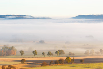 Morning fog over the fields in a rural landscape with autumn colors