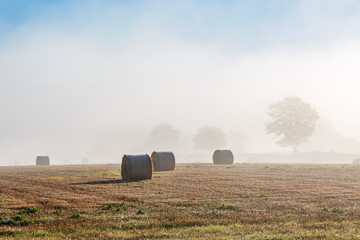 Round bales on a field in fog