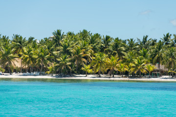 Poster Caraïben Scenic beach of Saona island