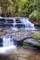 Serenity Falls at Buderim Rainforest Park