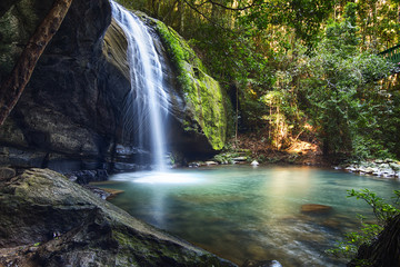 Serenity Falls at Buderim Rainforest Park