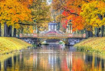 In de dag Oranje eclat Golden fall in Alexander park, Pushkin, St. Petersburg, Russia