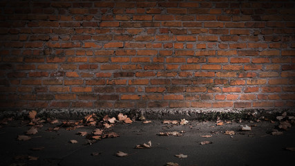 background empty brick wall on the street, asphalt, yellow leaves autumn, sunlight, City street background