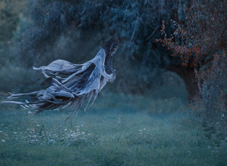 dementor flies through the air with waving mantle into the forest above the lawn with emerald frozen grass covered with hoarfrost. Harry Potter. Dentor as a decoration for halloween. art photo.