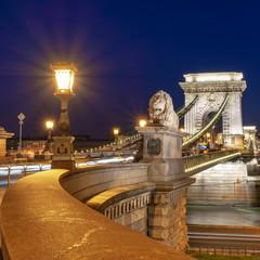 Wall Mural - Chain bridge at night  in Budapest, Hungary