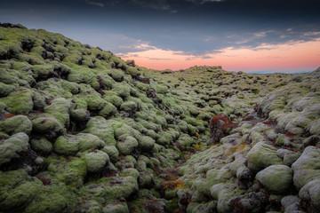 Eldhraun Lava field, Iceland