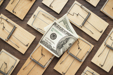 many mousetraps surrounding one hundred dollar bill. business concept