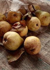Ripe pears, healthy organic food.
