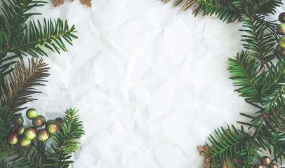 Christmas and New Year holiday background. Xmas greeting card. Spruce tree on white background.