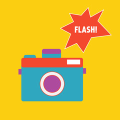 Vector camera with flash