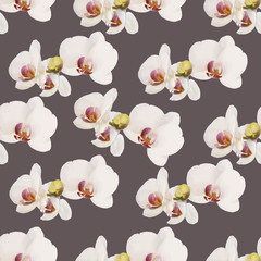 Vector orchid pattern