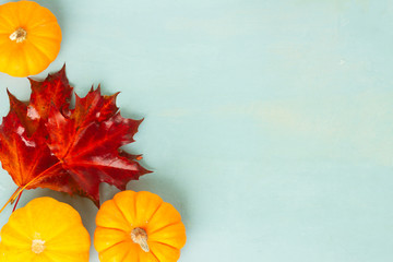 ripe of raw orange pumpkin with fall leaves on blue table Fototapete