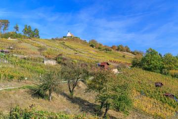 Wurmlinger Kapelle im Herbst
