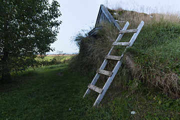 Cabaña en el campo cubierta de hierba en Islandia. Wall mural