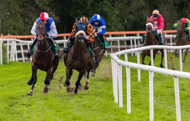 Speeding race horses and jockeys taking a sharp turn on the track