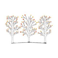Aspen trees vector illustration