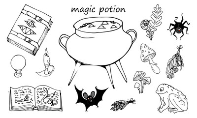 Magic potion, set of elements on a white background, Grimoire, pot with potion and ingredients