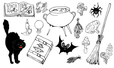 Grimoire, pot with potion, ingredients, herbs, toad, spider, cat, bat, vector illustration