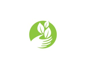 Green leaf symbol illustration