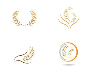 Wheat logo illustration