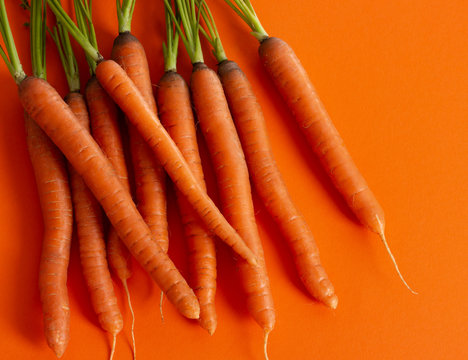Bunch of fresh raw carrots on orange background.