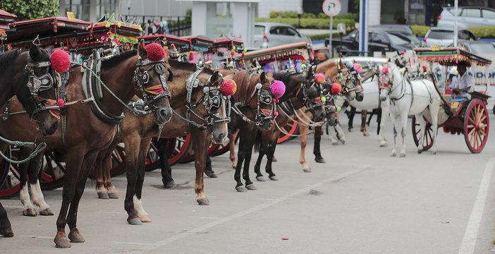 Bendi - Traditional Transportation From Bukittinggi, West Sumatera, Indonesia