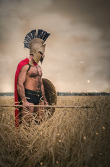 Ancient warrior is standing in a wheat field with a spear and a shield with his head down against the background. Lose the battle concept.