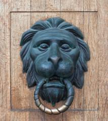 Door handle in the form of a bronze lion head
