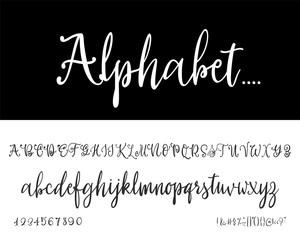 Modern Calligraphy Vintage Handwritten - vector Font for Lettering.Trendy Alphabet Retro Calligraphy Script.