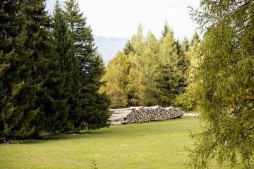 Catasta di legname