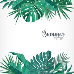 Square backdrop or background with green palm and monstera leaves or foliage of rainforest plants at top and bottom edges and place for text. Hawaiian colorful realistic vector illustration.